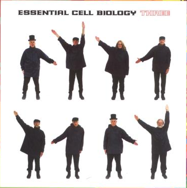 Back cover of Essential Cell Biology, 3rd edition. Help album.