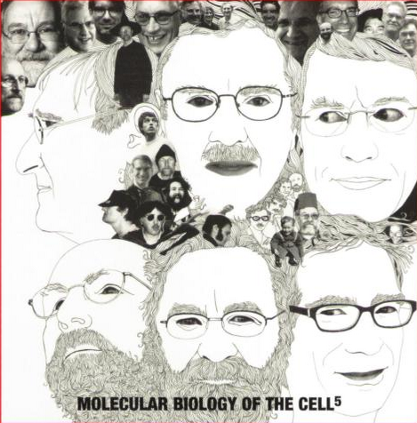 Back cover of MBoC 5th edition